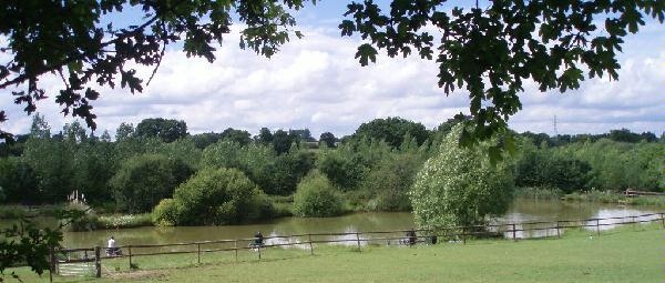 Elmbridge Fishery